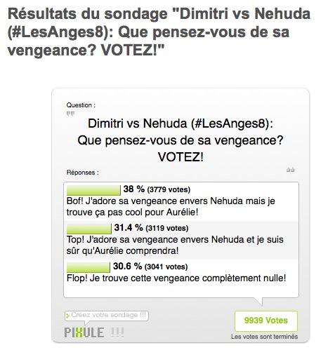resultat-sondage-vengeance-dimitri-nehuda-les-anges-8